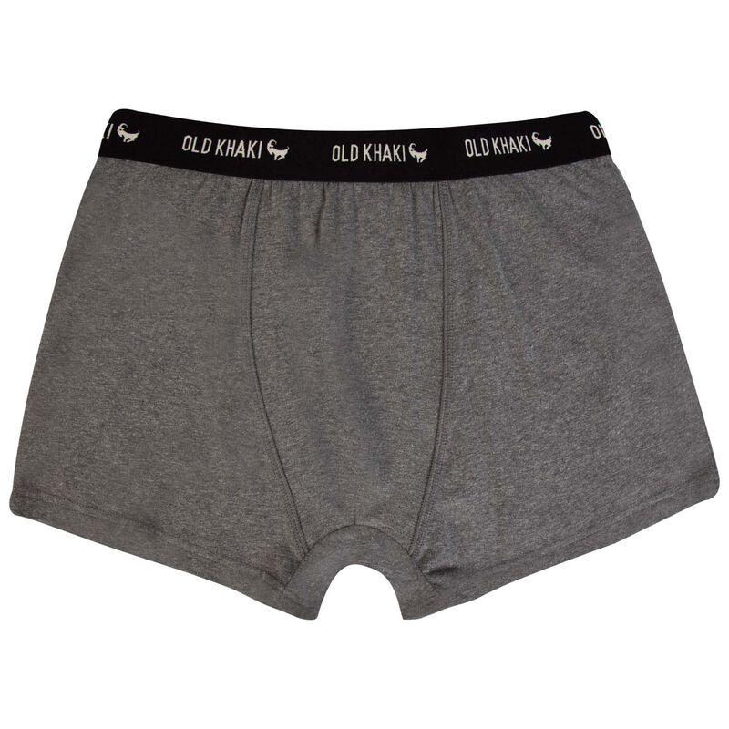 Men's 2-Pack Tropical Underwear -  lightblue-assorted