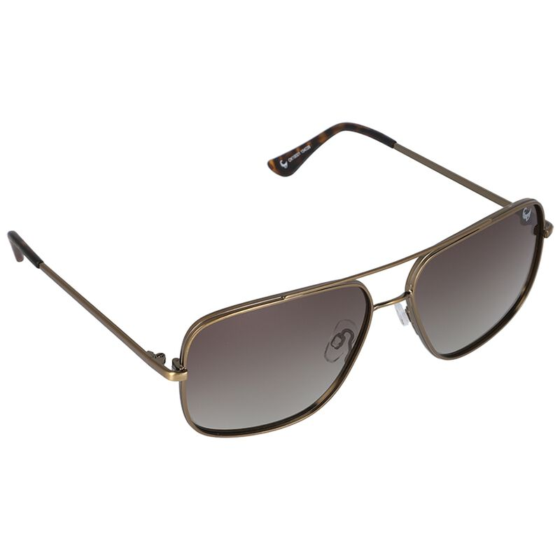 Men's Polarised Square Aviator Sunglasses -  gold-black