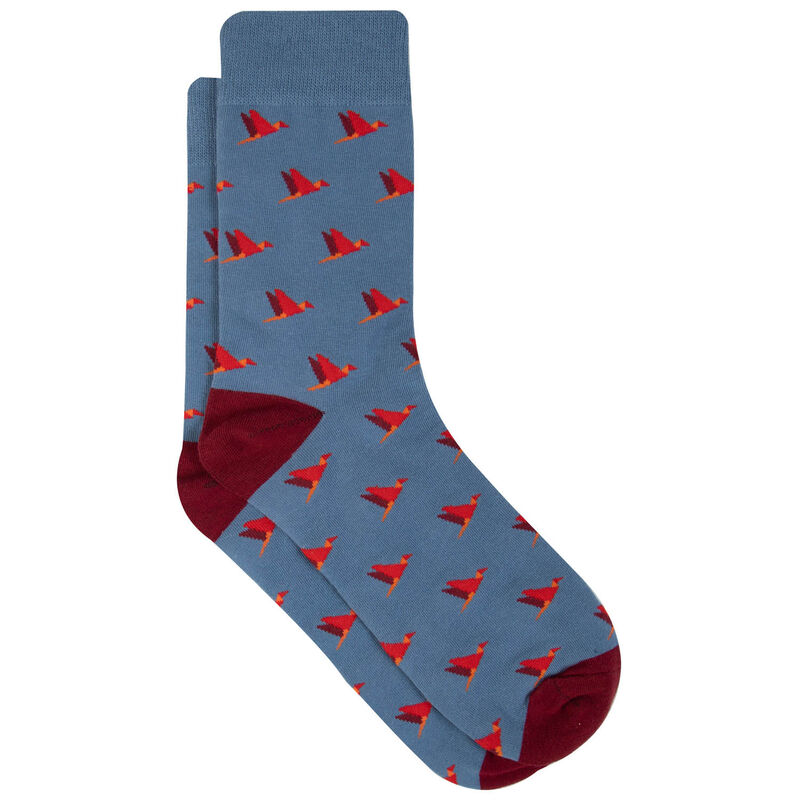 Men's Pacifico Parrot Sock -  blue-red